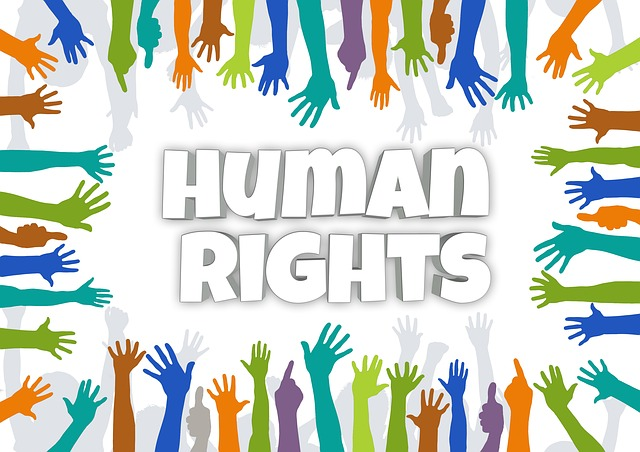 The picture Shows multi-coloured hands reaching out to the centre, where the words 'human rights' are displayed